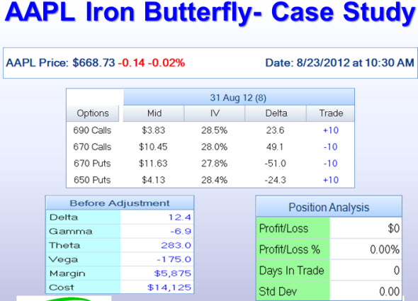 AAPL Iron Butterfly Case Study Matrix